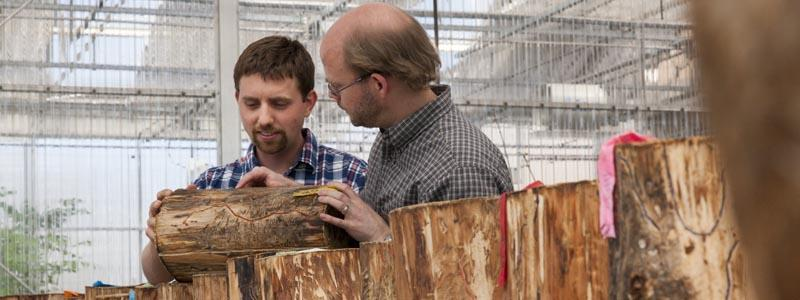 Picture of Derek and Brian looking at log